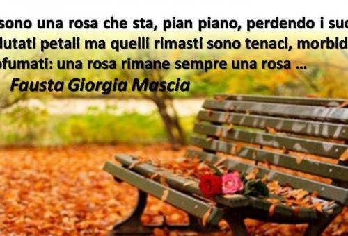 Una rosa è sempre una rosa …